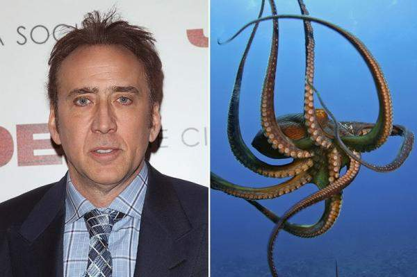 Николас Кейдж и осьминог